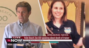 WAPO wants everyone to know Palm Beach Zoo has changed venues. Why do they want us to know?