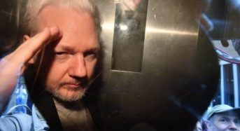 Assange drops surrender option, decides legal battle against US extradition